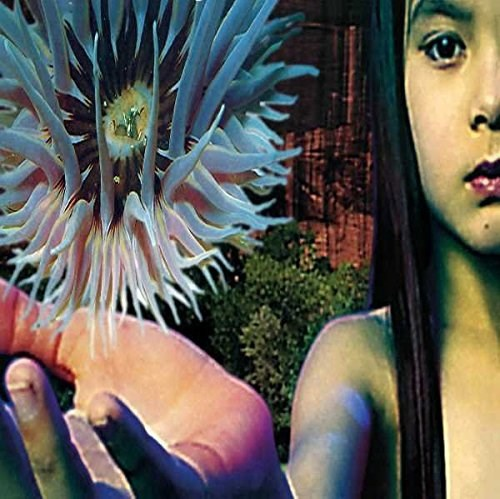 FUTURE SOUND OF LONDON - Lifeforms - 2LP