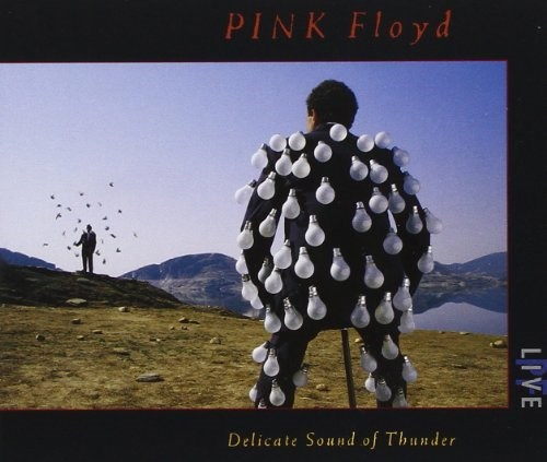 PINK FLOYD - Delicate Sound of Thunder: Live