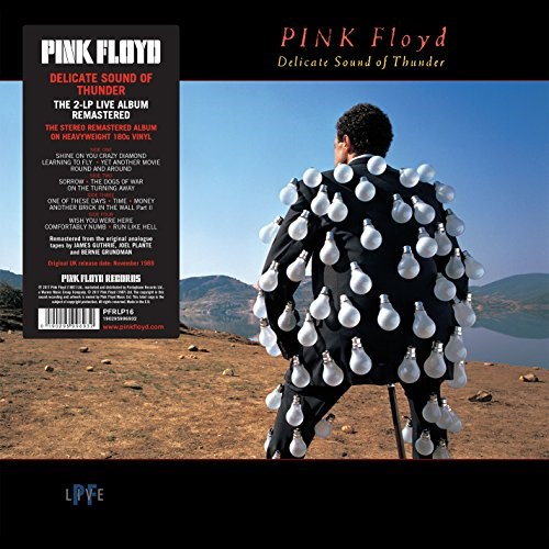 PINK FLOYD - Delicate Sound Of Thunder - 2LP